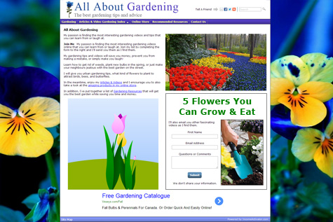 Content Website Front Page Example