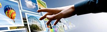 Website & Mobile Website