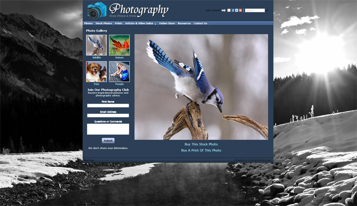 Free Photography Art Website