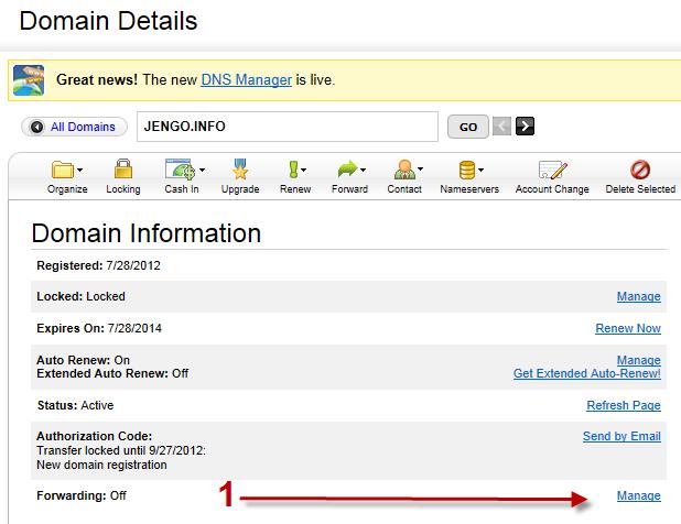 forwarding a domain name